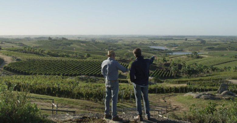 4. januar 2019 havde det amerikanske vinmagasin Wine Enthusiast præmiere på en ny serie om vin – It Starts With Wine.