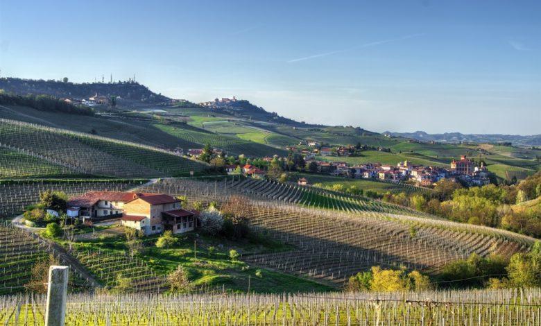 Photo of Den italienske vinproduktion faldt med 12% i 2019