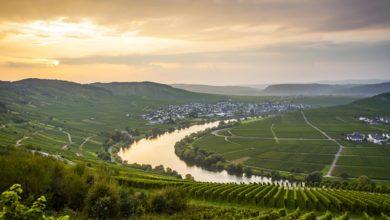 Photo of Tysklands smukkeste vinudsigt 2020 er fundet.